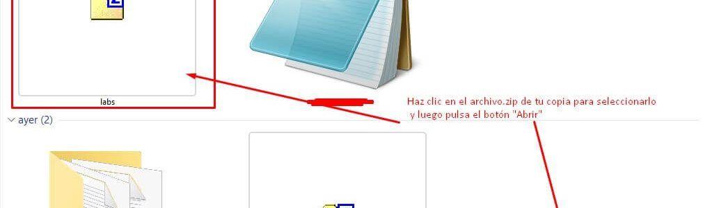 copia-de-seguridad-manual-8-2